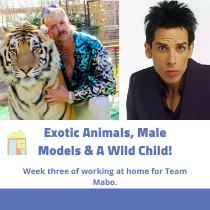 exotic animals and models